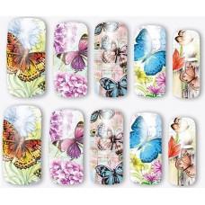 Ваденки, пеперуди кафяви