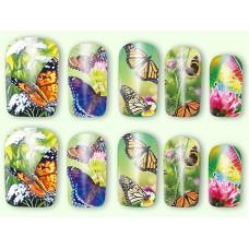 Ваденки, пеперудена градина