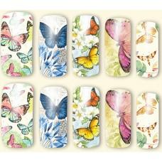 Ваденки, пеперуди със зелени крила