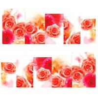 Ваденки, Рози 7