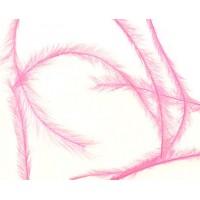 Розови малки пера