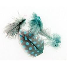Сини големи пера