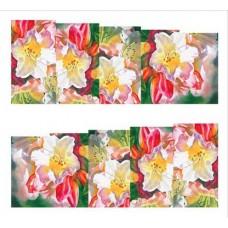 """Ваденки """"Цветна градина"""" 4"""